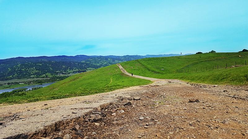 Easy walking trails